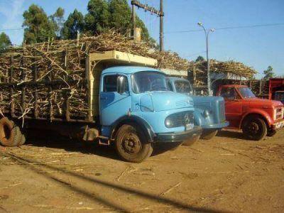 Zafra cañera finalizó con 55 millones de kilos cosechados