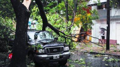 Chivilcoy qued� arrasada: volaron 54 techos y cayeron 3.000 �rboles