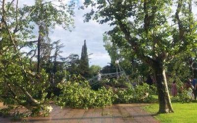 """Temporal en Chivilcoy: """"La ciudad está destrozada"""", dijo el Intendente Pittelli"""