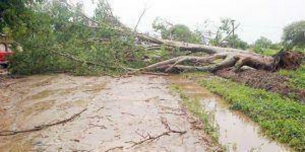 Destrozos en varias localidades del interior por fuertes lluvias con viento