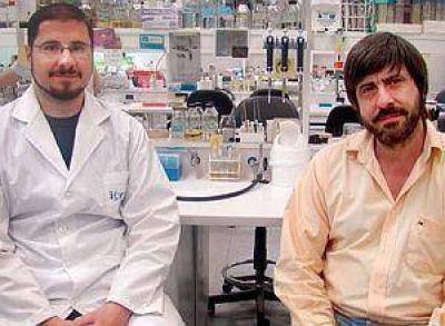 Científicos del país hallan proteína capaz de convertir colesterol en provitamina D