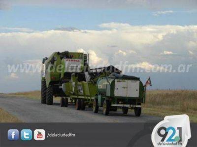 La cosecha de trigo comienza a dar sus primeros pasos en la región