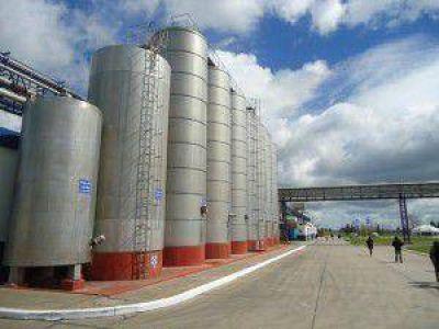 Remate de #Fonterra mostró valores #lácteos históricos