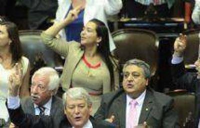 Evita Isa, Pablo López y Guillermo Durand juraron por Salta en la Cámara Baja Nacional