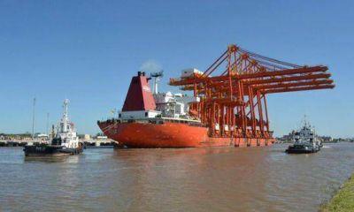 La Plata. Llegaron las grúas de TecPlata y ahora dicen que operará en marzo con contenedores
