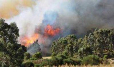 Incendio en Sierra de la Ventana: Evacuados y graves daños en la zona serrana