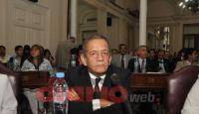 """Impulsan la """"Ley del Árbol"""" en la provincia"""