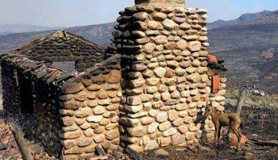 El fuego ya devoró 30 mil hectáreas en Sierra de la Ventana