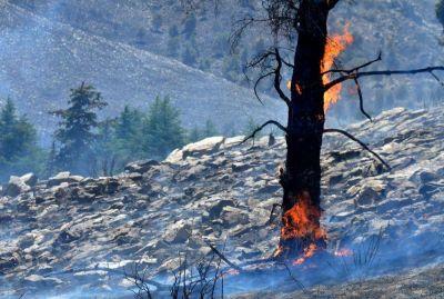 Ya son 35.000 las hectáreas que se quemaron en la zona serrana