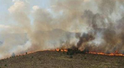 Ascienden a 45 mil las hectáreas afectadas por el fuego en Sierra de la Ventana