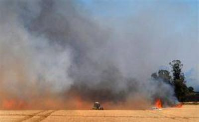Controlaron el incendio en Sierra de la Ventana