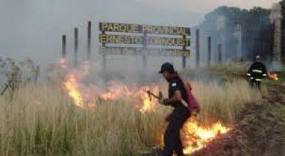 Daño irreparable: El intendente de Tornquist dijo que se quemó el 75% del Parque Provincial