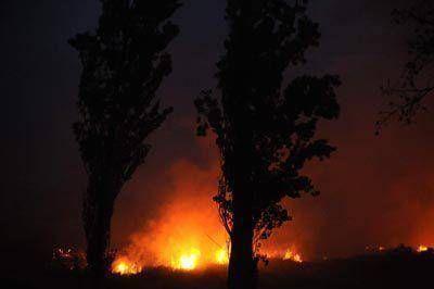 Voraz incendio en campos de la Sierra de Los Padres