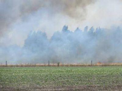 Un importante incendio amenaza al Vivero de Claromecó