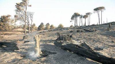 Claromecó: el fuego empezó a apagarse y vuelven los turistas