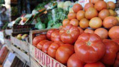 """Para los productores, la importación de tomates """"es una cortina de humo"""""""