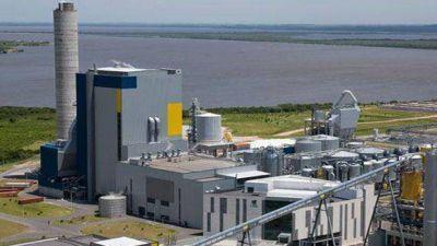 UPM: estiman transportar seis mil toneladas de madera por el río Uruguay