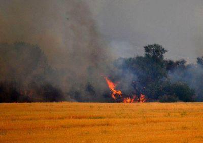 Otro incendio en la zona serrana: ya afectó 15 mil hectáreas