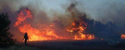 Impresionante despliegue se realizó en uno de los establecimientos afectados por el fuego