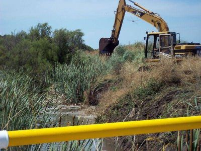 Nuevo ataque contra la Reserva Puerto Mar del plata