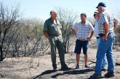 Incendios en la provincia: BLP ayudará a afectados