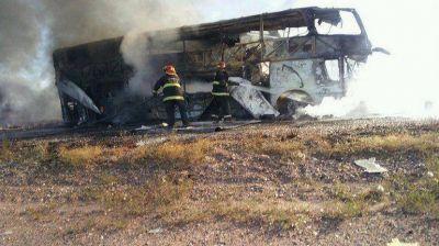 Mendoza: la Justicia investiga al camionero del trágico accidente