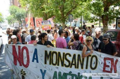 Rechazan el estudio de impacto ambiental presentado por Monsanto en Córdoba