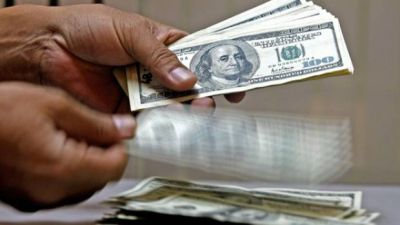 El dólar oficial bajó dos centavos, pero el blue permanece firme y avanza el dólar bolsa