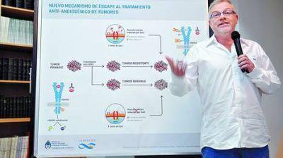 Avance argentino: Hallan un mecanismo clave en la lucha contra el c�ncer