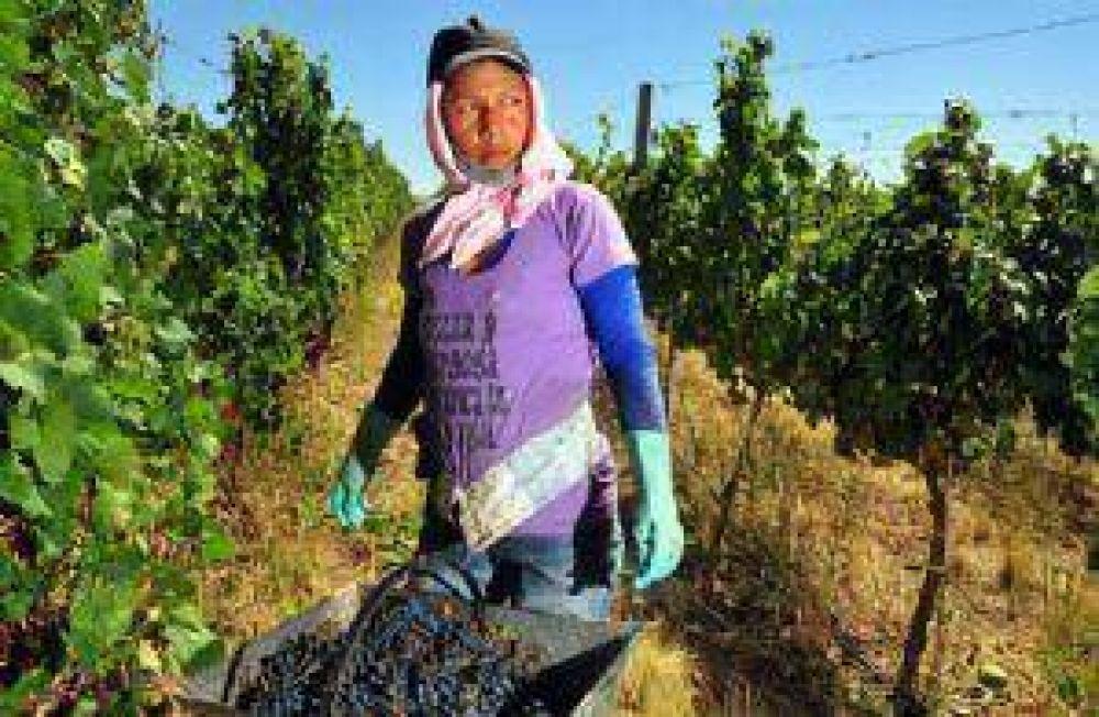 Trabajadores vitivinícolas piden suba de más de 50%