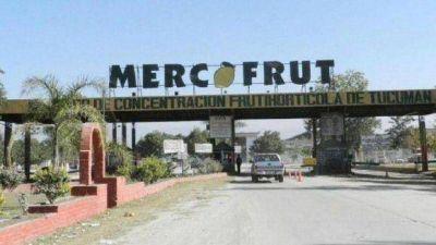 Desde el Mercofrut aseguran que los precios están estables