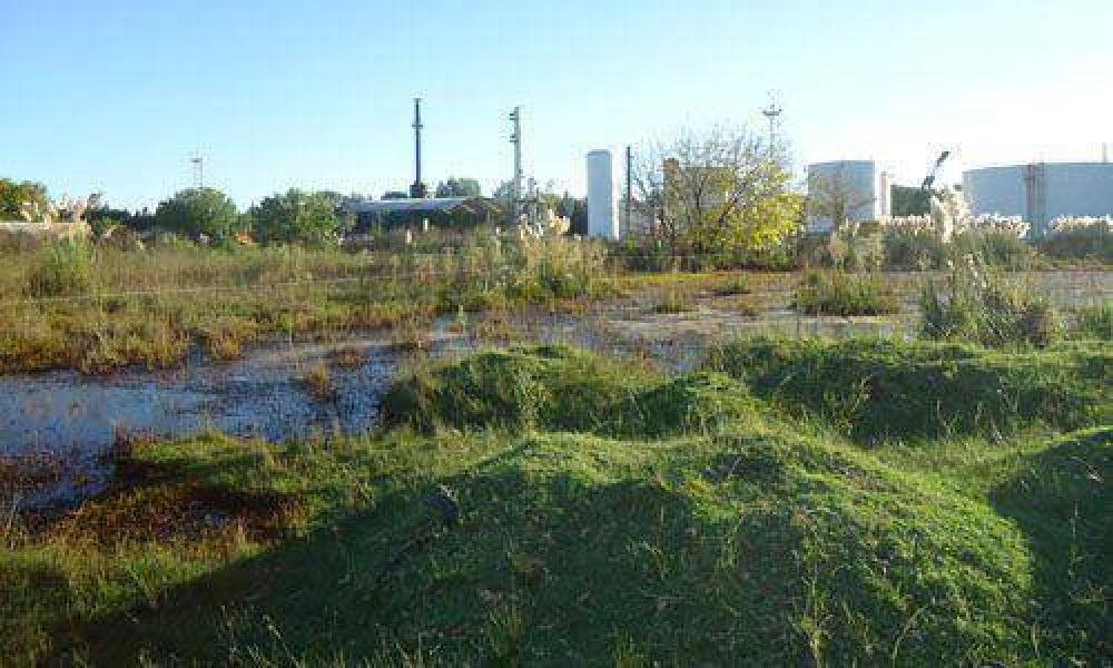 Apuntan contra una destilería que vierte petróleo en una laguna