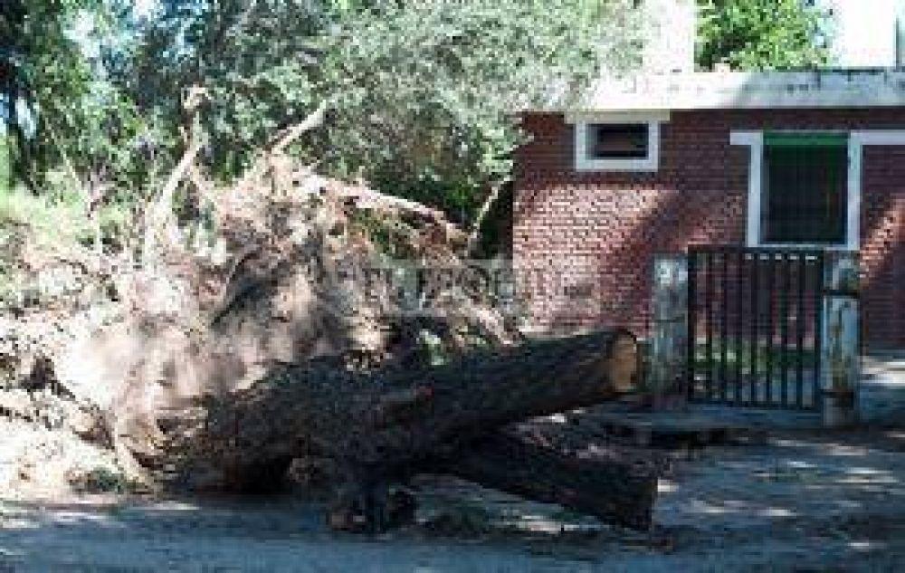 La tormenta de granizo derribó 180 postes y dañó líneas de media tensión