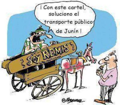 Transporte público: casi el 70% apoya el proyecto comunal para que haya combis