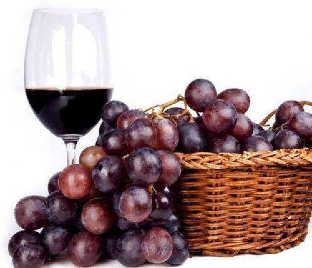 Elaboración de vino cayó un 10% en lo que va del año
