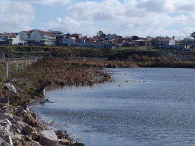 Desestiman estudio de impacto ambiental presentado por Aldosivi
