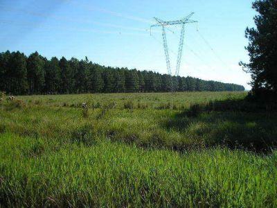 Abrieron sobre con ofertas para obras de interconexión eléctrica entre Bahía y Mar del Plata