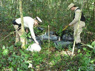 Secuestraron cerca de 50 kilos de droga que tenían como destino Uruguay