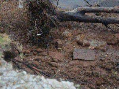 Donovan Polo Club: Confirmaron que los restos hallados en predio donde funcionó un centro clandestino de detención son de animales.