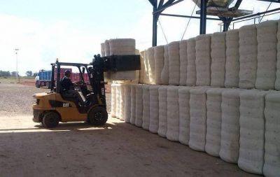 Comenz� el proceso de desmote de algod�n en bruto en Villa Dos Trece