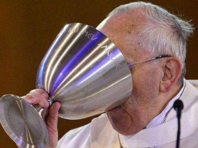 De Mendoza saldrán las uvas del vino que el Papa Francisco beberá en misa