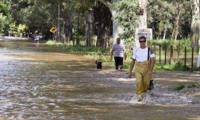 En las 8 escuelas anegadas por inundaciones se las ingenian para dictar clases