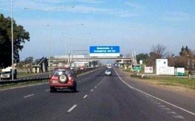 Le piden a Autopistas del Sol que alambre Panamericana para evitar accidente con animales