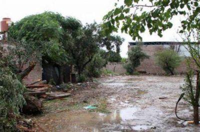 Eladio Aguirre: las precipitaciones llegaron a los 500 milímetros