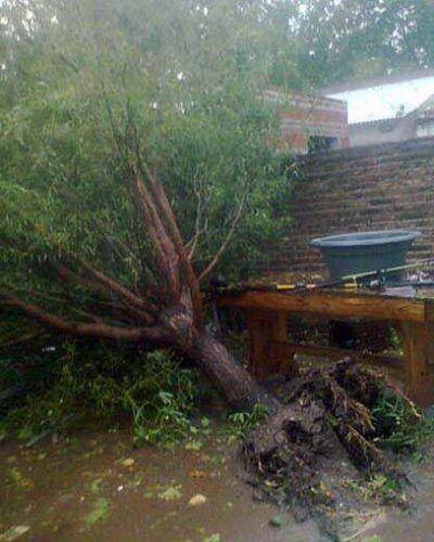 Víctima de un tornado que arrasó la ciudad