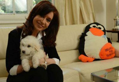 Hasta Cristina hizo home office durante el paro