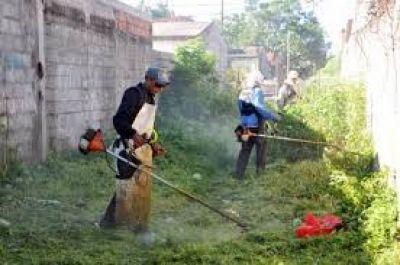 Desde la Dirección de Calidad de Vida buscan erradicar los baldíos de la ciudad