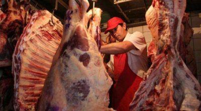 Frigoríficos con actividad en baja, piden que se faene más carne en Mendoza