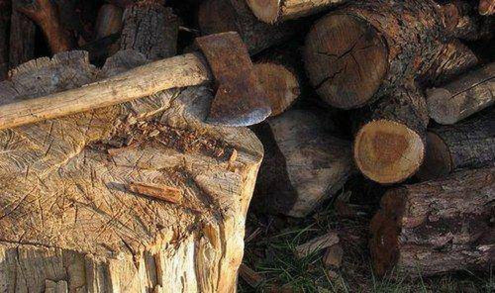 Aborígenes enfrentados por la tala
