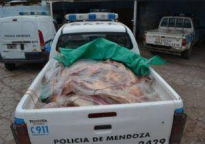 Capturaron a neuquinos que intentaban pasar carne ilegal a Mendoza